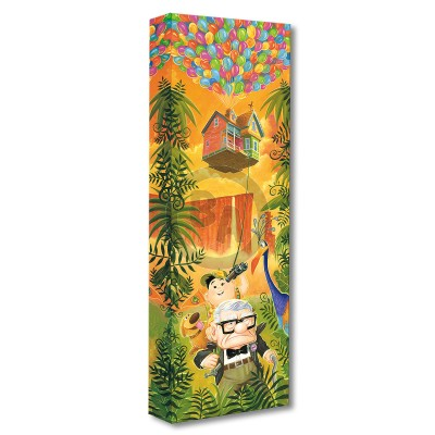 Treasures on Canvas: Journey to Paradise Falls by Tim Rogerson