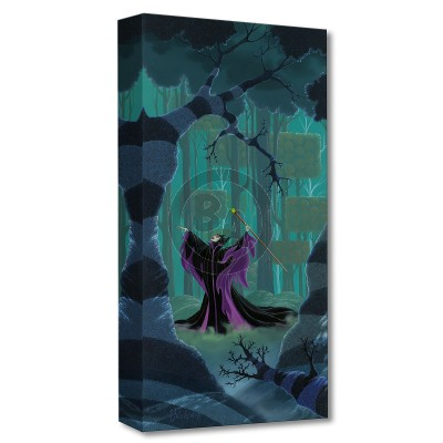 Treasures on Canvas: Maleficent Summons the Power by Michael Provenza
