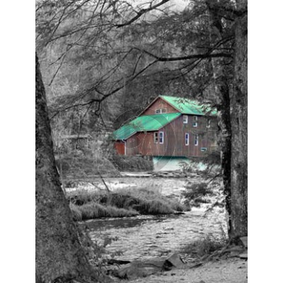 River House (black and white with color) by Elyn Zerfas