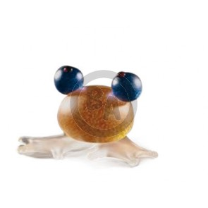 Borowski Frosch (frog), Orange (24-01-55)