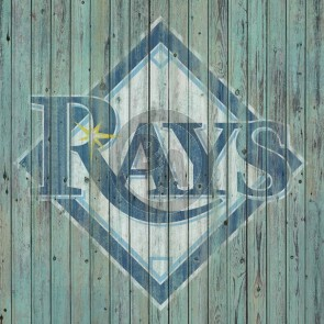 Tampa Bay Rays Logo by Mike Kupka