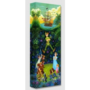 Treasures on Canvas: The Hero of Neverland by Tim Rogerson