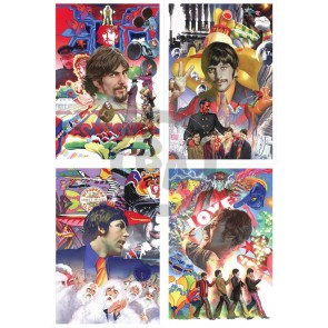 Beatles Boxed Set by Alex Ross (Regular)