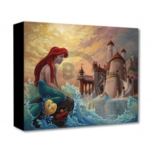 Treasures on Canvas: Ariel's Daydream by Jared Franco