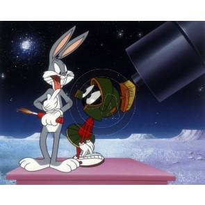Bugs and Marvin the Martian