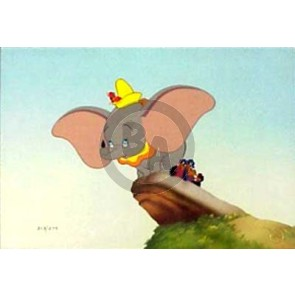 Dumbo and Crows - Learning to Fly