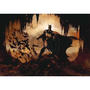 Domain of The Bat by Arthur Suydam